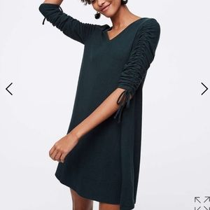 Ann Taylor LOFT sweater dress forest green MP
